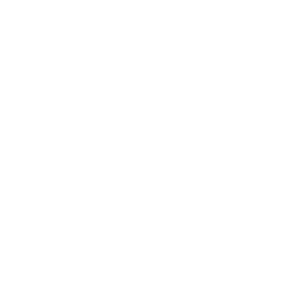 Icon Trainer
